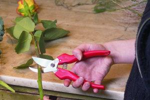 praktische bloemen- en fruitschaar