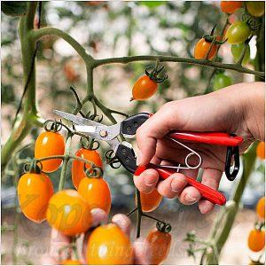 oogstschaar-felco-322-600-3